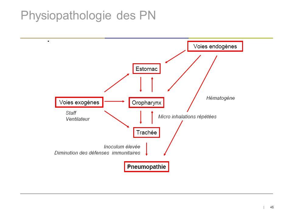 Physiopathologie des PN