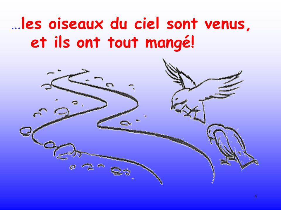 …les oiseaux du ciel sont venus,
