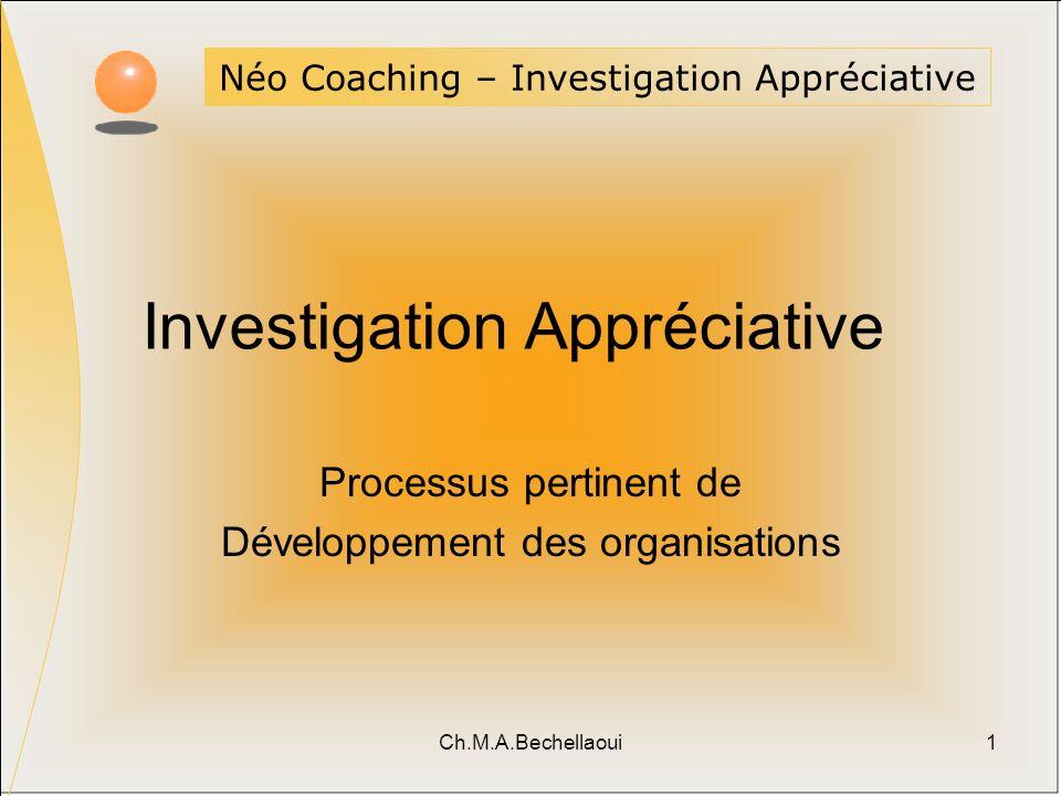 Investigation Appréciative