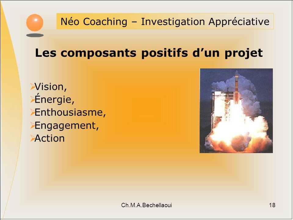 Les composants positifs d'un projet