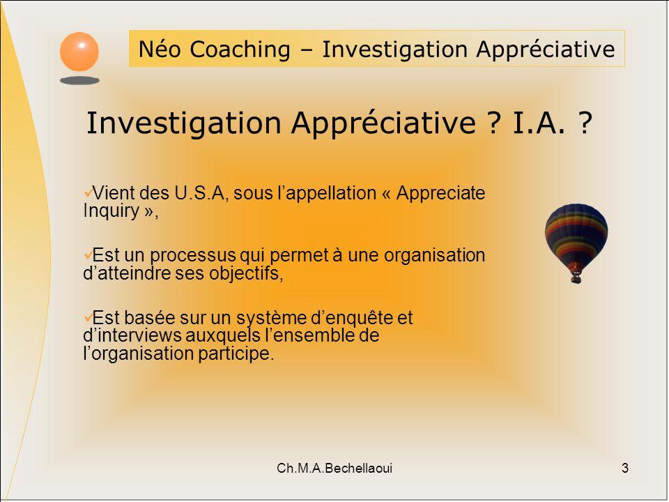 Investigation Appréciative I.A.