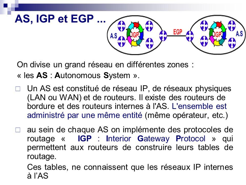 AS, IGP et EGP ... On divise un grand réseau en différentes zones :