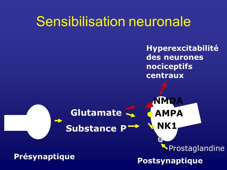 Sensibilisation neuronale
