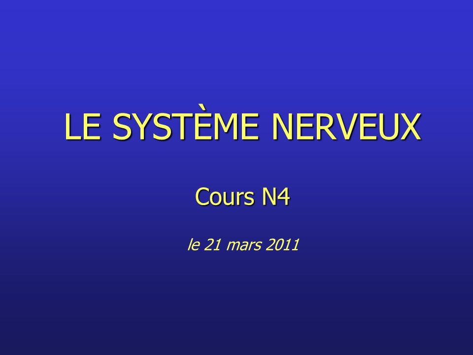 LE SYSTÈME NERVEUX Cours N4 le 21 mars 2011