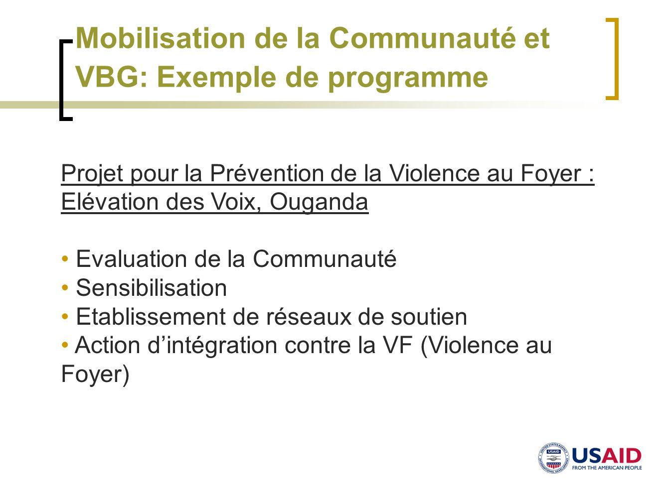 Mobilisation de la Communauté et VBG: Exemple de programme
