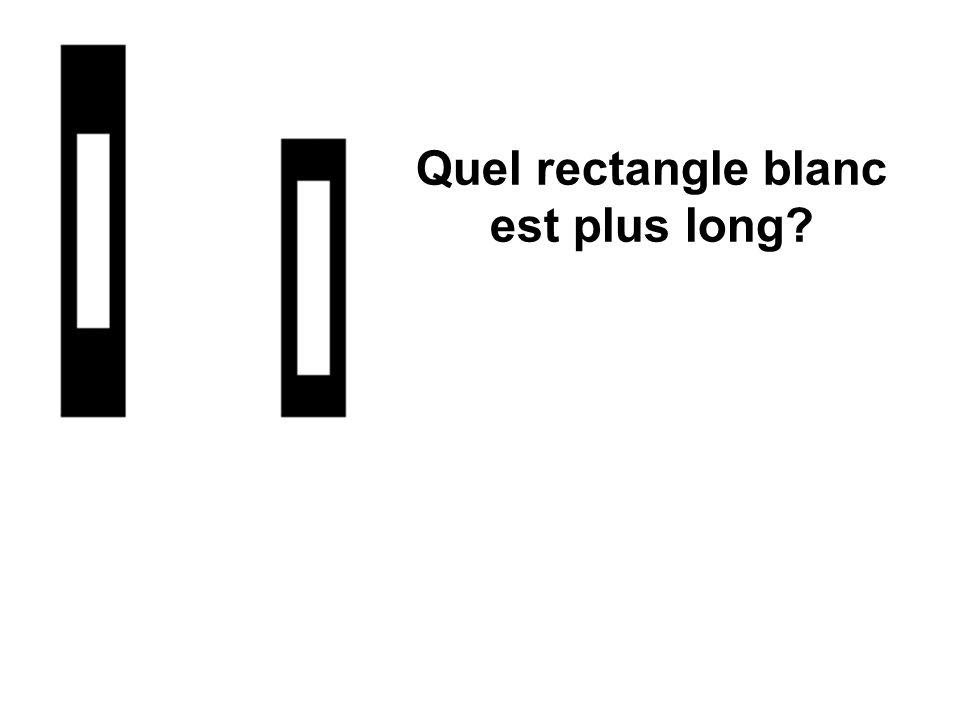 Quel rectangle blanc est plus long