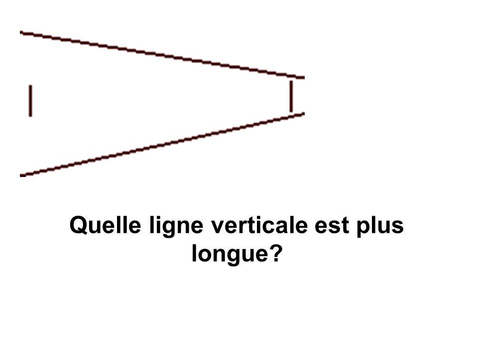 Quelle ligne verticale est plus longue