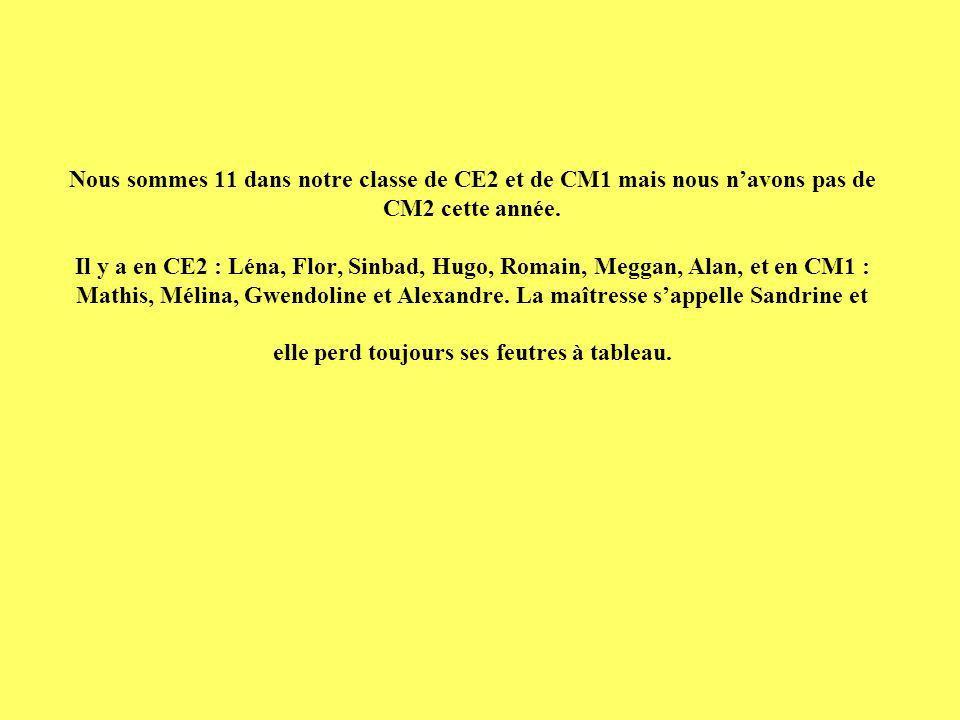 Nous sommes 11 dans notre classe de CE2 et de CM1 mais nous n'avons pas de CM2 cette année.