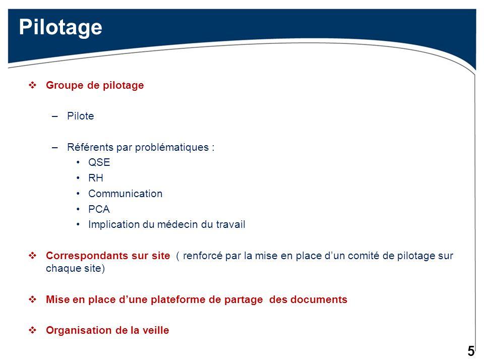 Pilotage Groupe de pilotage Pilote Référents par problématiques : QSE