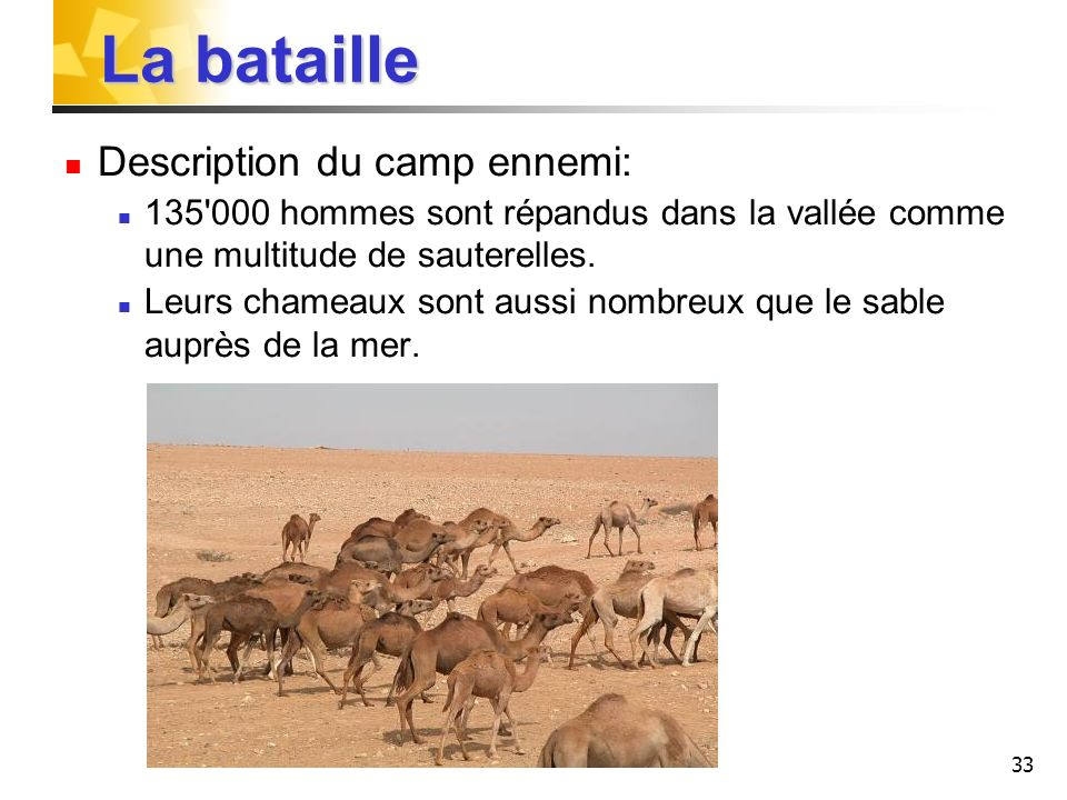 La bataille Description du camp ennemi: