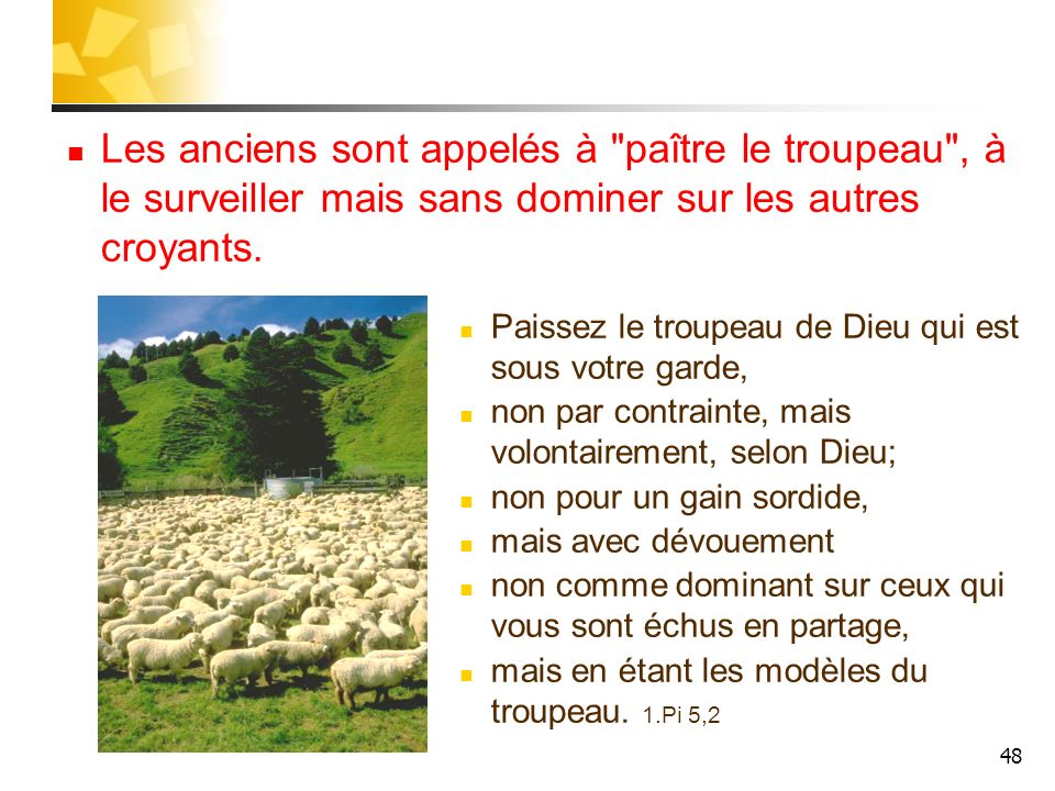 Les anciens sont appelés à paître le troupeau , à le surveiller mais sans dominer sur les autres croyants.