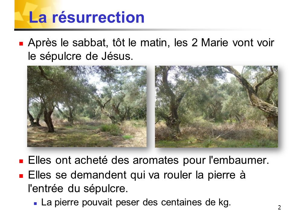 La résurrection Après le sabbat, tôt le matin, les 2 Marie vont voir le sépulcre de Jésus. Elles ont acheté des aromates pour l embaumer.