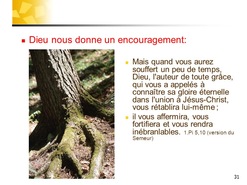 Dieu nous donne un encouragement:
