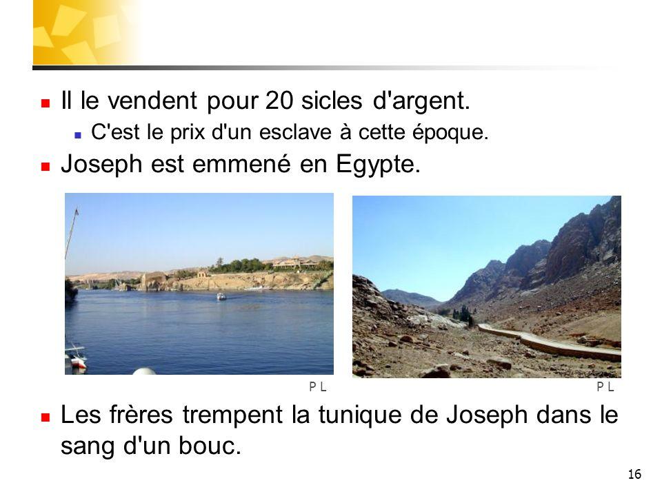 Il le vendent pour 20 sicles d argent. Joseph est emmené en Egypte.