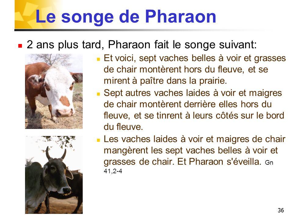 Le songe de Pharaon 2 ans plus tard, Pharaon fait le songe suivant: