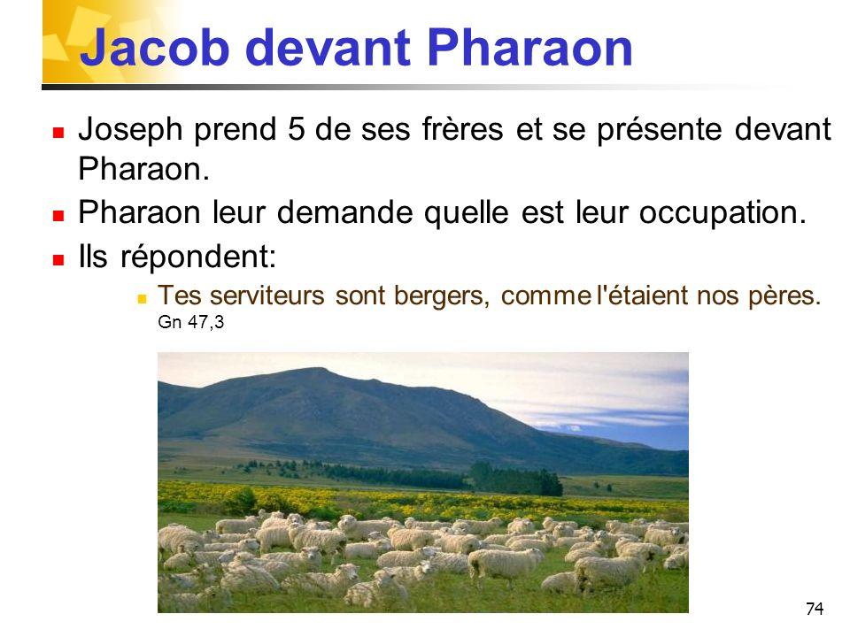 Jacob devant Pharaon Joseph prend 5 de ses frères et se présente devant Pharaon. Pharaon leur demande quelle est leur occupation.