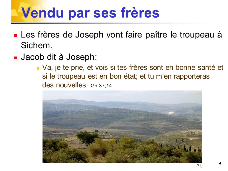 Vendu par ses frèresLes frères de Joseph vont faire paître le troupeau à Sichem. Jacob dit à Joseph: