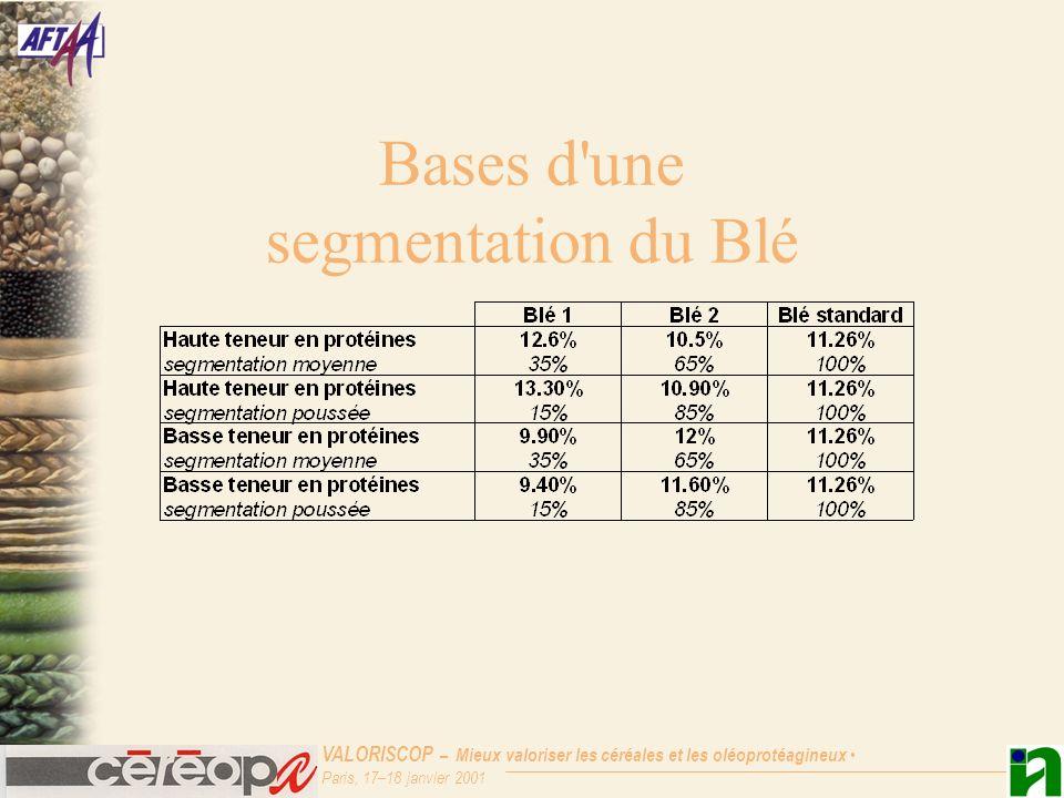 Bases d une segmentation du Blé
