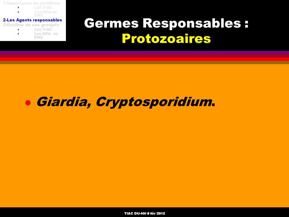 Germes Responsables : Protozoaires