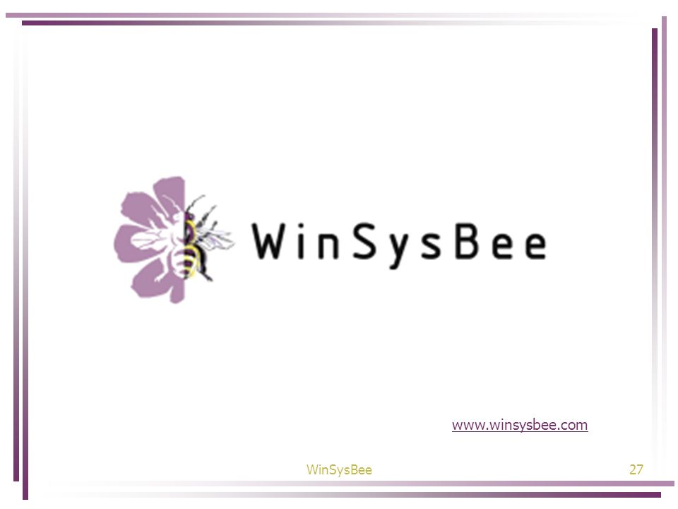 WinSysBee