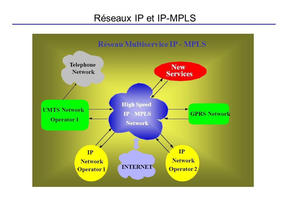 Réseaux IP et IP-MPLS Réseau Multiservice IP - MPLS New Services