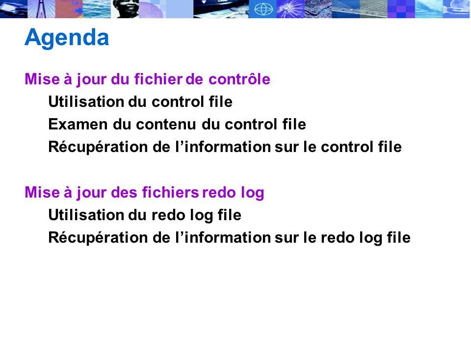 Agenda Mise à jour du fichier de contrôle Utilisation du control file