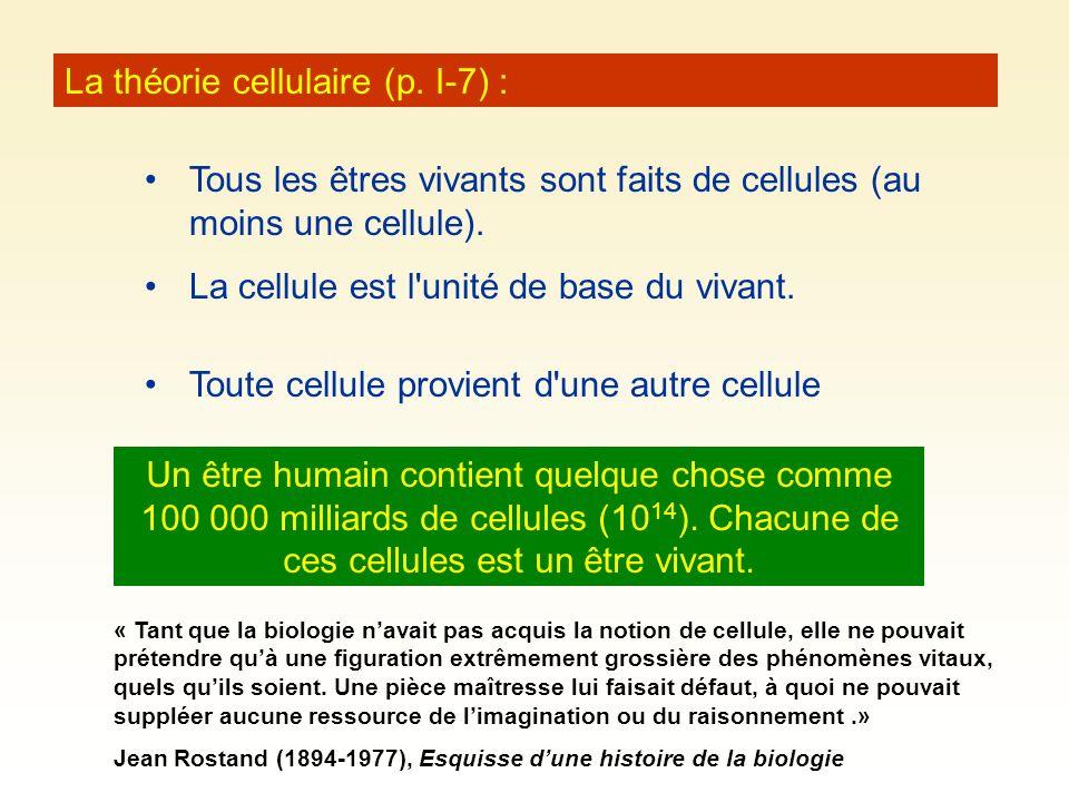 La théorie cellulaire (p. I-7) :