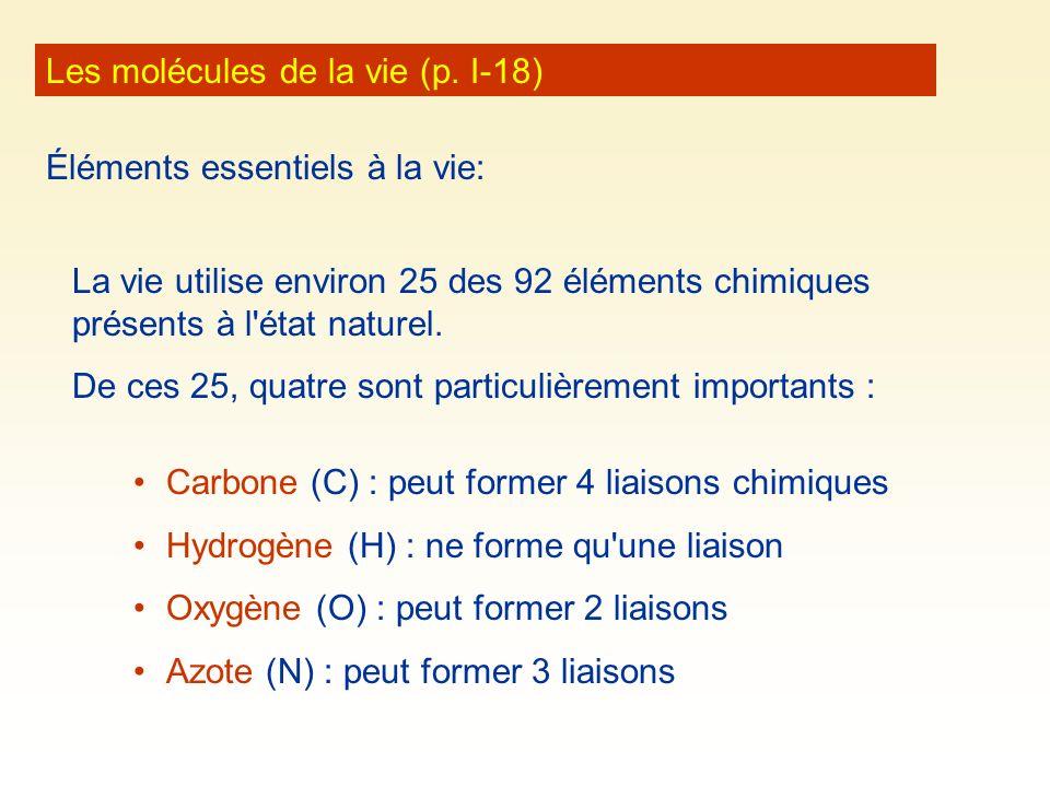 Les molécules de la vie (p. I-18)