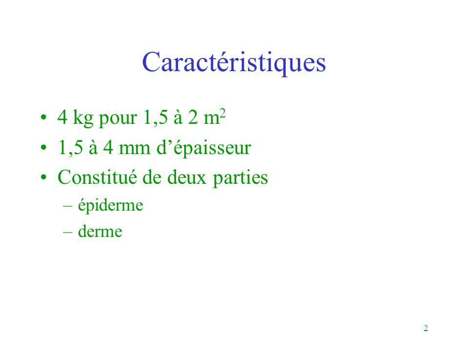 Caractéristiques 4 kg pour 1,5 à 2 m2 1,5 à 4 mm d'épaisseur