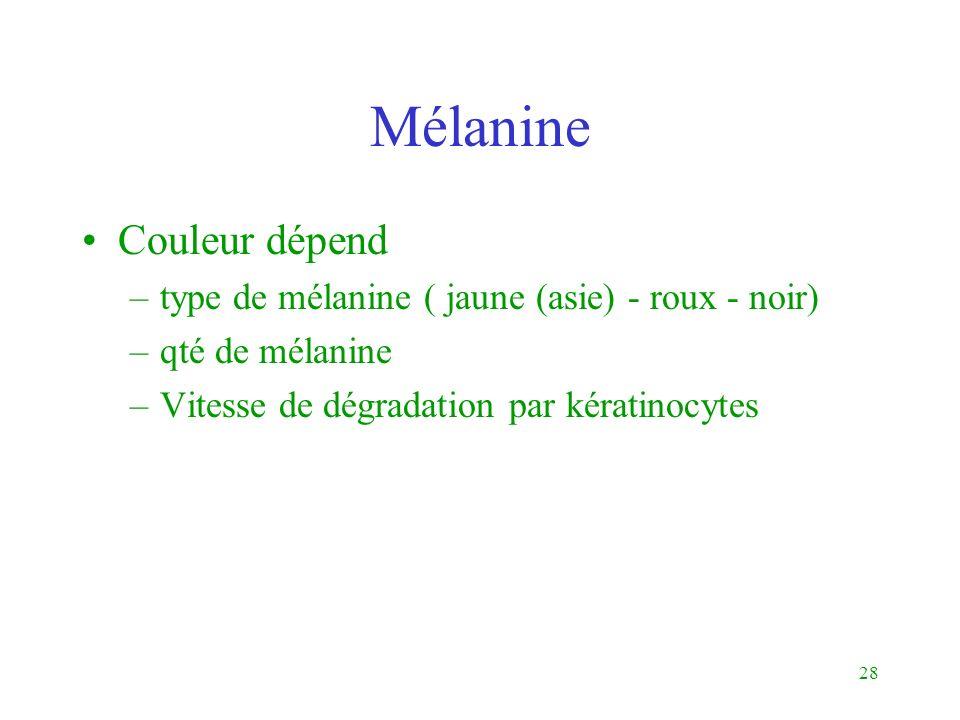 Mélanine Couleur dépend type de mélanine ( jaune (asie) - roux - noir)