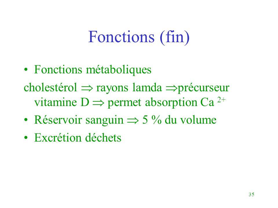 Fonctions (fin) Fonctions métaboliques