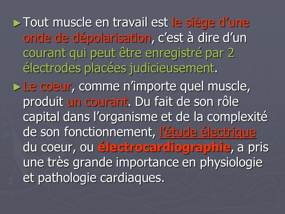 Tout muscle en travail est le siège d'une onde de dépolarisation, c'est à dire d'un courant qui peut être enregistré par 2 électrodes placées judicieusement.