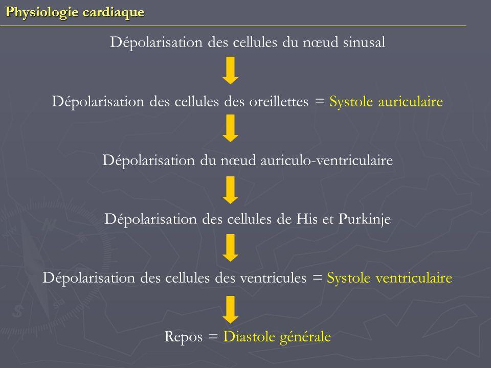 Dépolarisation des cellules du nœud sinusal