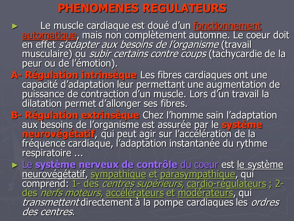 PHENOMENES REGULATEURS