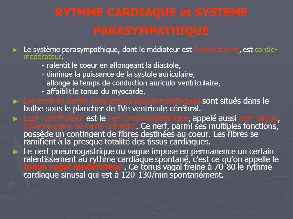 RYTHME CARDIAQUE et SYSTEME PARASYMPATHIQUE