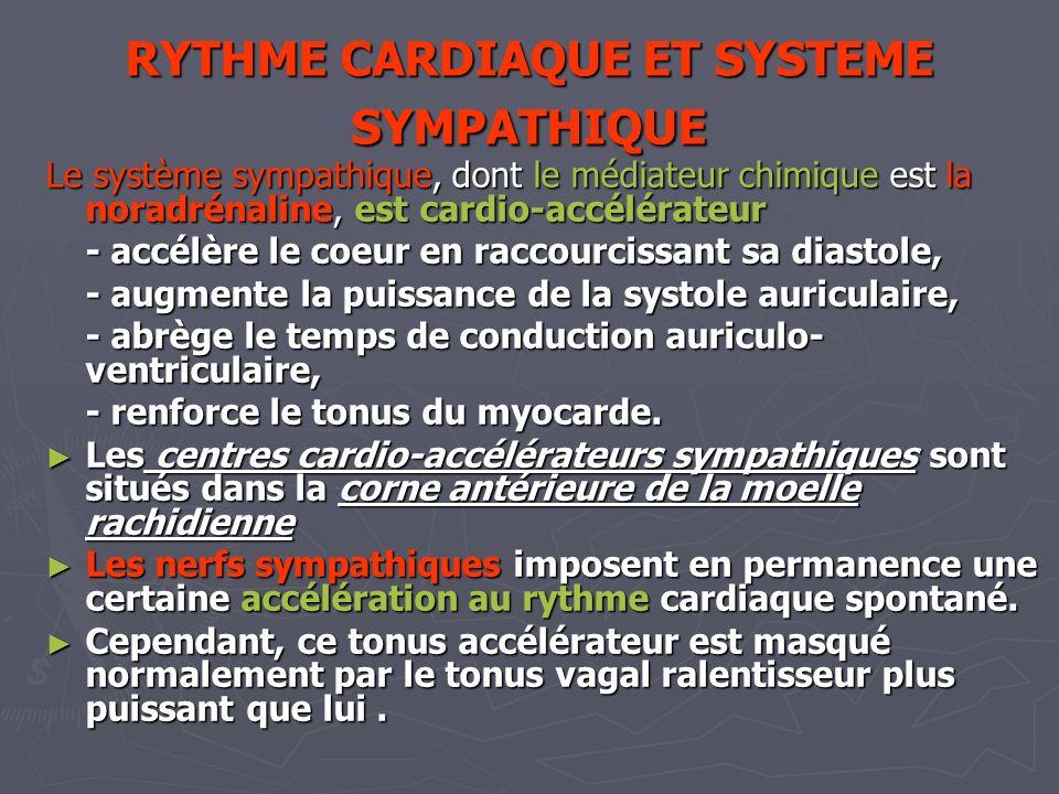 RYTHME CARDIAQUE ET SYSTEME SYMPATHIQUE