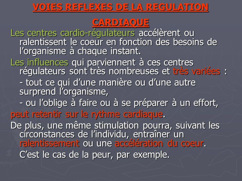 VOIES REFLEXES DE LA REGULATION CARDIAQUE