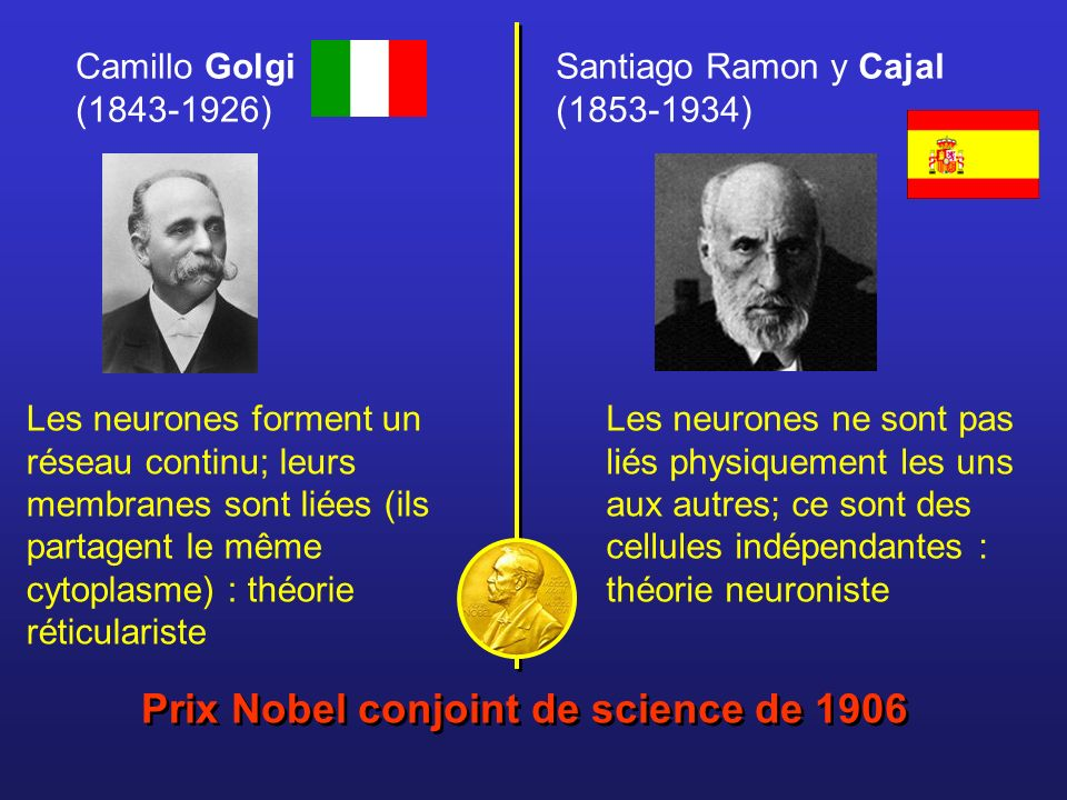Prix Nobel conjoint de science de 1906