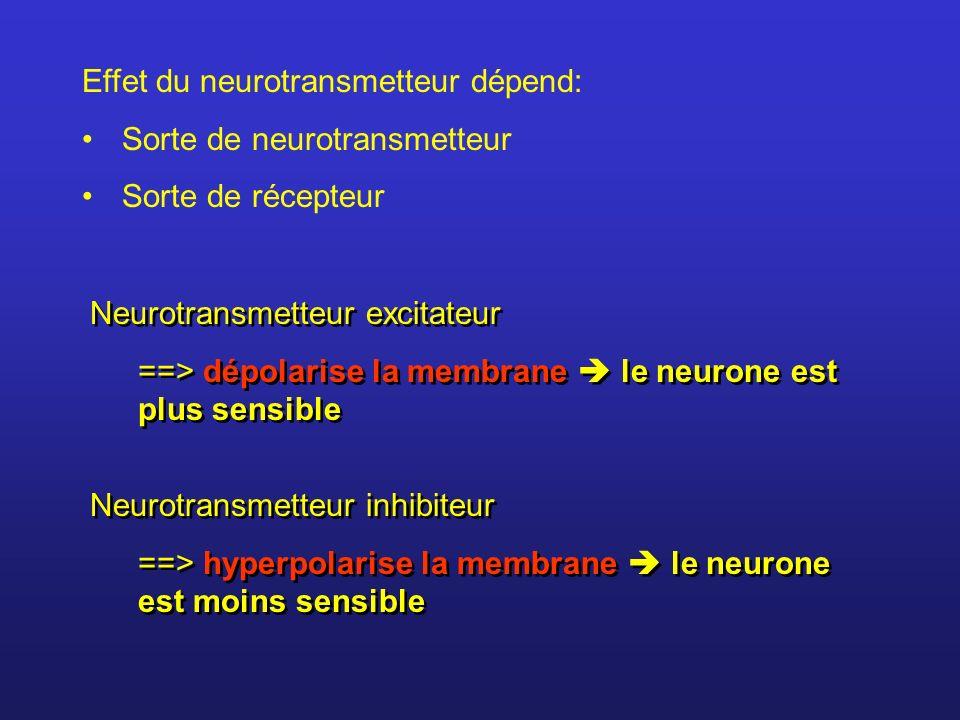 Effet du neurotransmetteur dépend:
