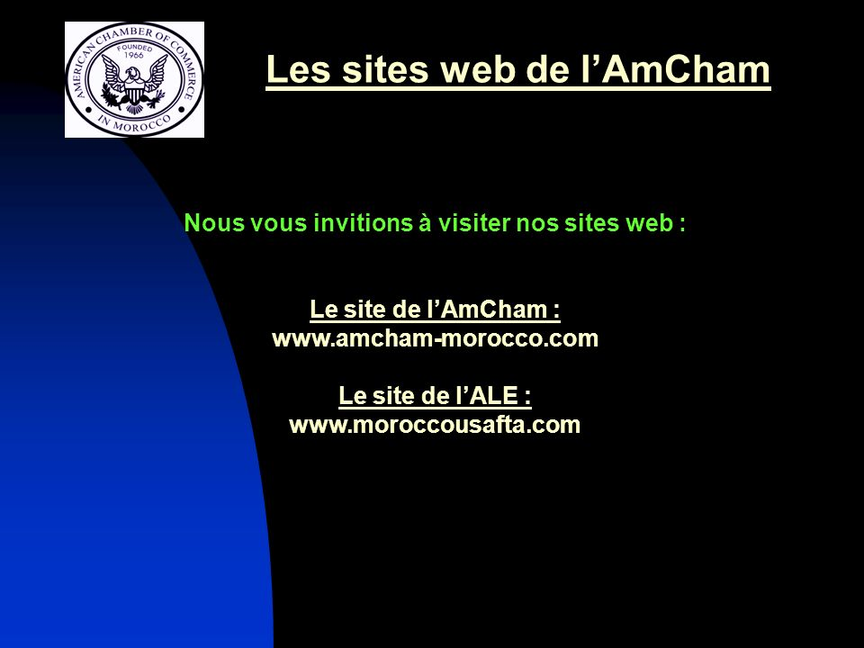 Les sites web de l'AmCham