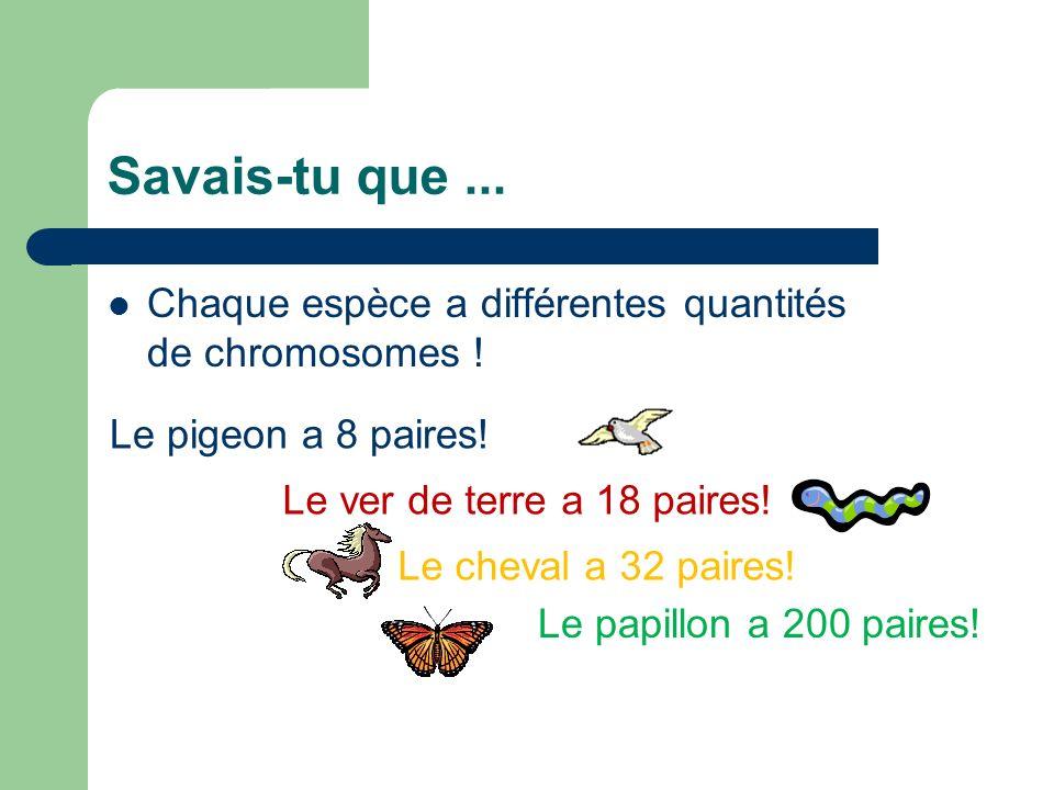 Savais-tu que ... Chaque espèce a différentes quantités de chromosomes ! Le pigeon a 8 paires! Le ver de terre a 18 paires!