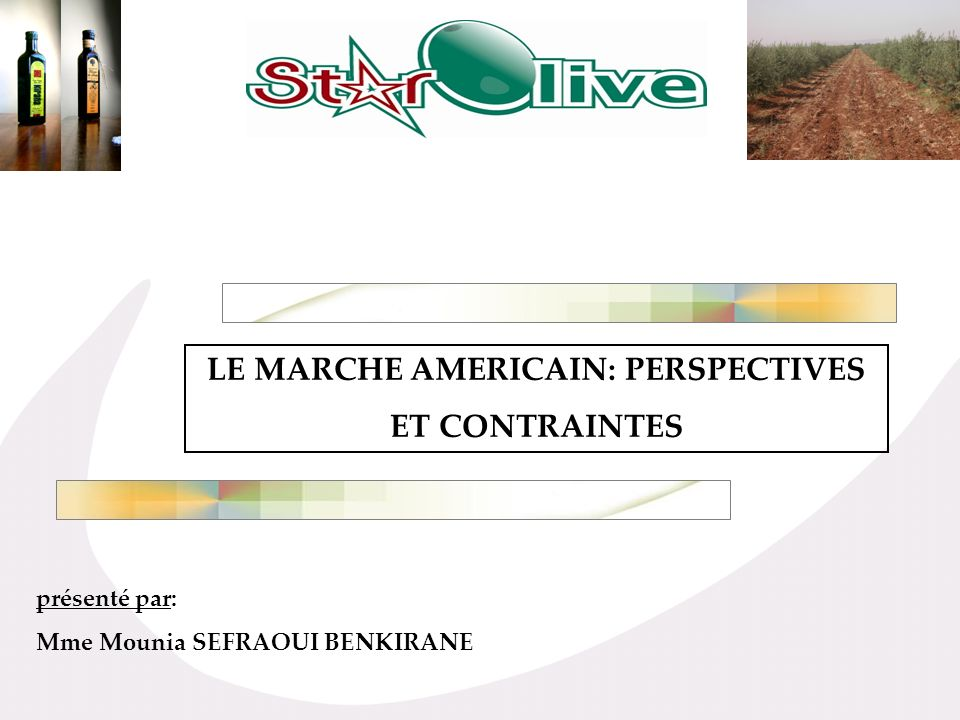 LE MARCHE AMERICAIN: PERSPECTIVES