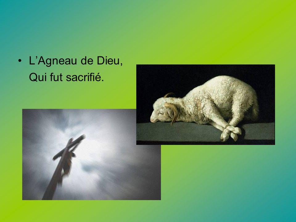 L'Agneau de Dieu, Qui fut sacrifié.