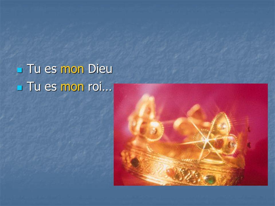 Tu es mon Dieu Tu es mon roi…