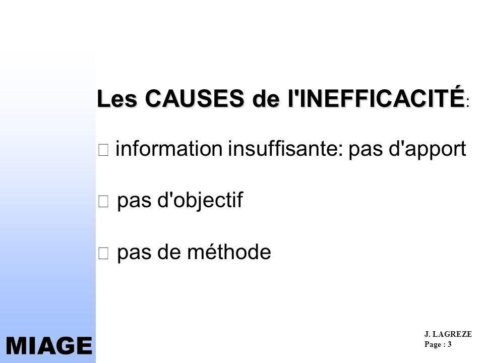 Les CAUSES de l INEFFICACITÉ:  information insuffisante: pas d apport  pas d objectif  pas de méthode