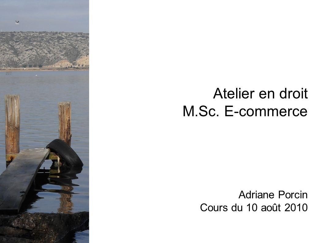 Atelier en droit M.Sc. E-commerce Adriane Porcin Cours du 10 août 2010
