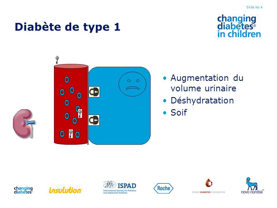 Diabète de type 1 Augmentation du volume urinaire Déshydratation Soif