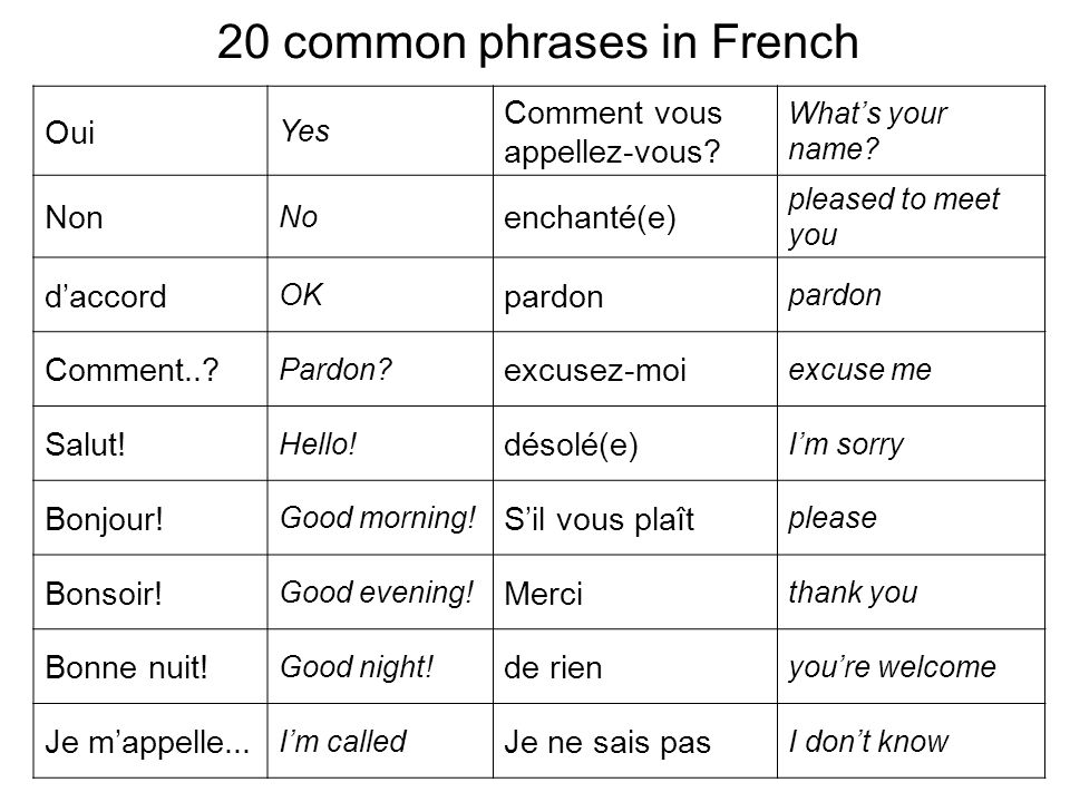 20 common phrases in French