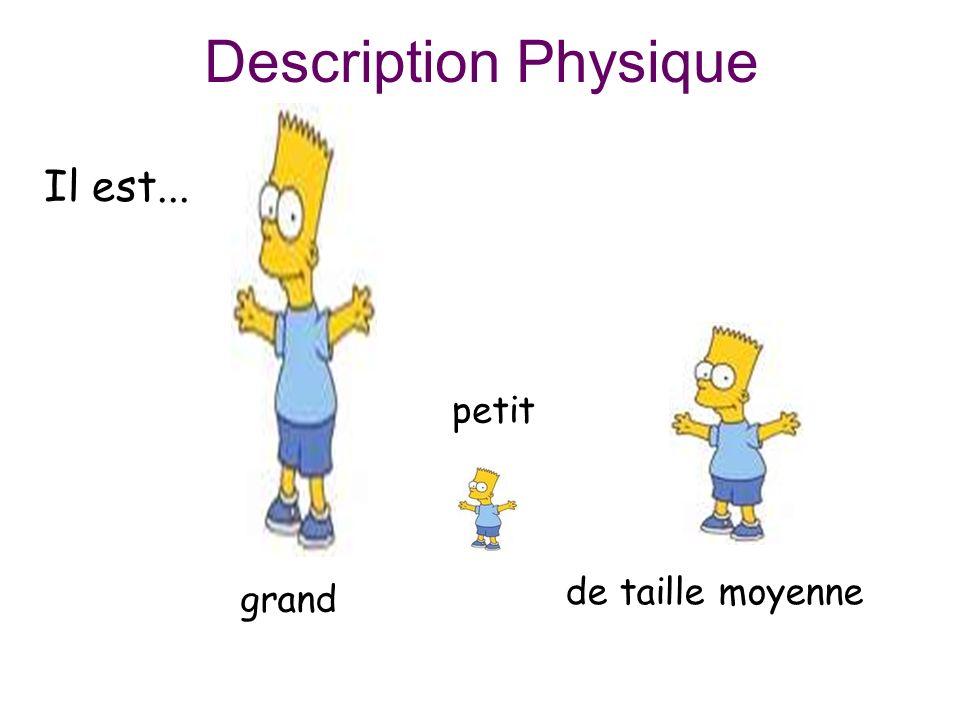 Description Physique Il est... petit de taille moyenne grand