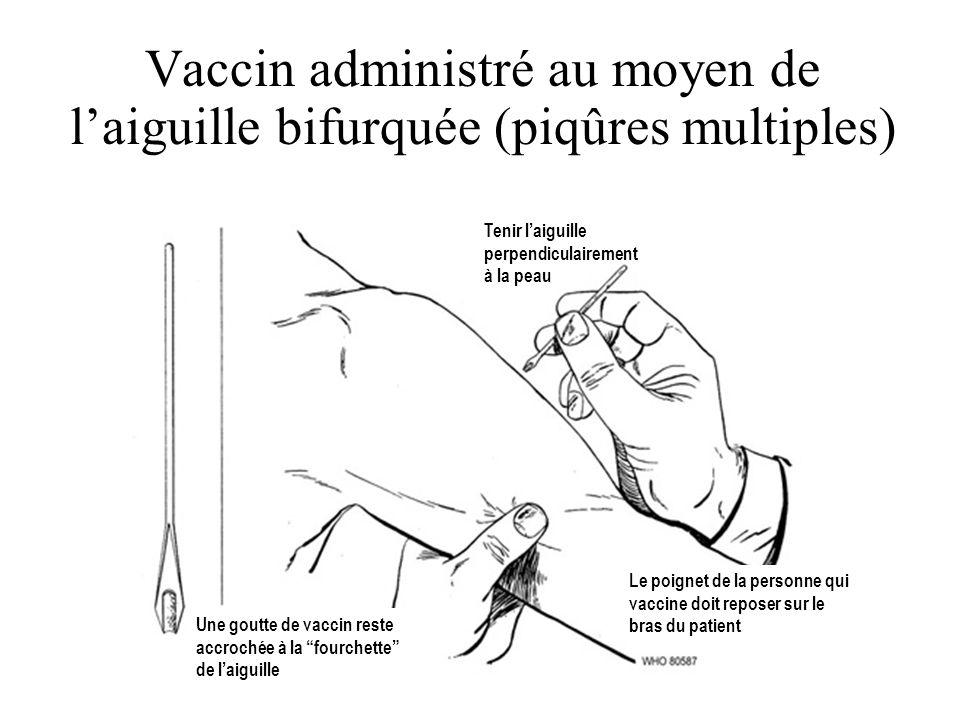 Vaccin administré au moyen de l'aiguille bifurquée (piqûres multiples)